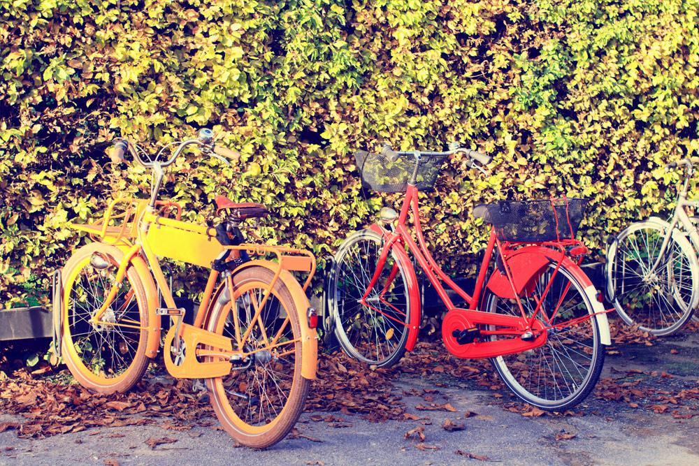 Moja przygoda z rowerami holenderskimi